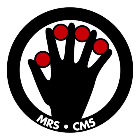Logo - Magischer Ring Schweiz